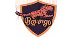 Bajunga casino logo