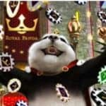 Royal Panda Xmas Reward